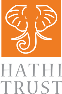 A new speaker series at UH Libraries opens with Mike Furlough of HathiTrust.