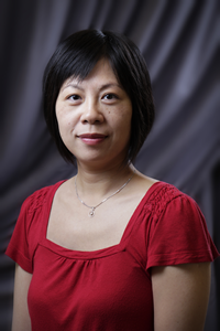 Wenli Gao was accepted to the Data and Visualization Institute for Librarians.