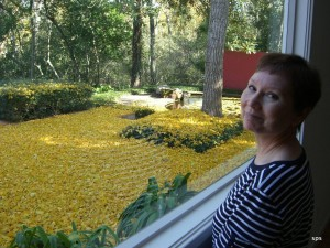 Toni at home in Houston, with a carpet of fallen ginkgo leaves