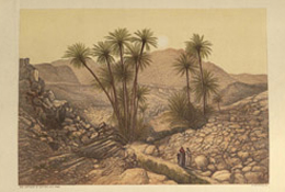 The Desert of Sinai, 1870